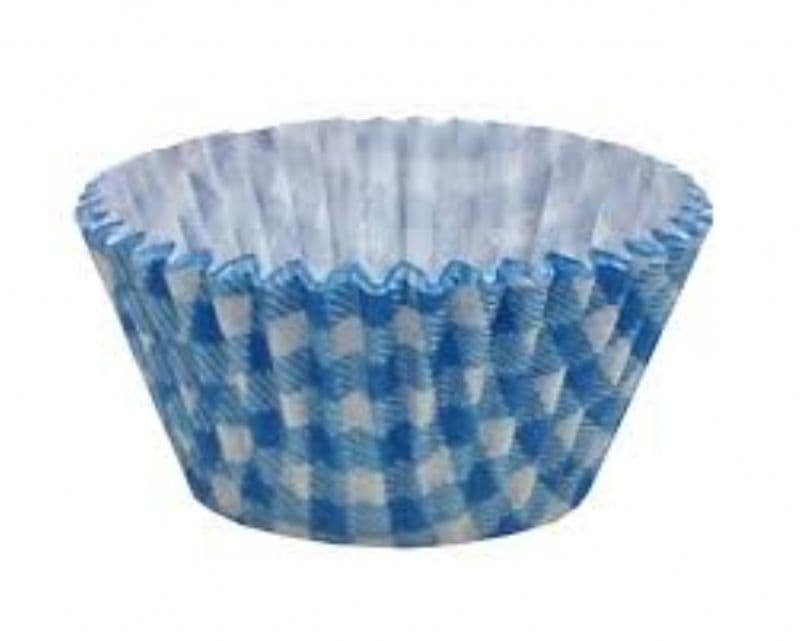 blue gingham case