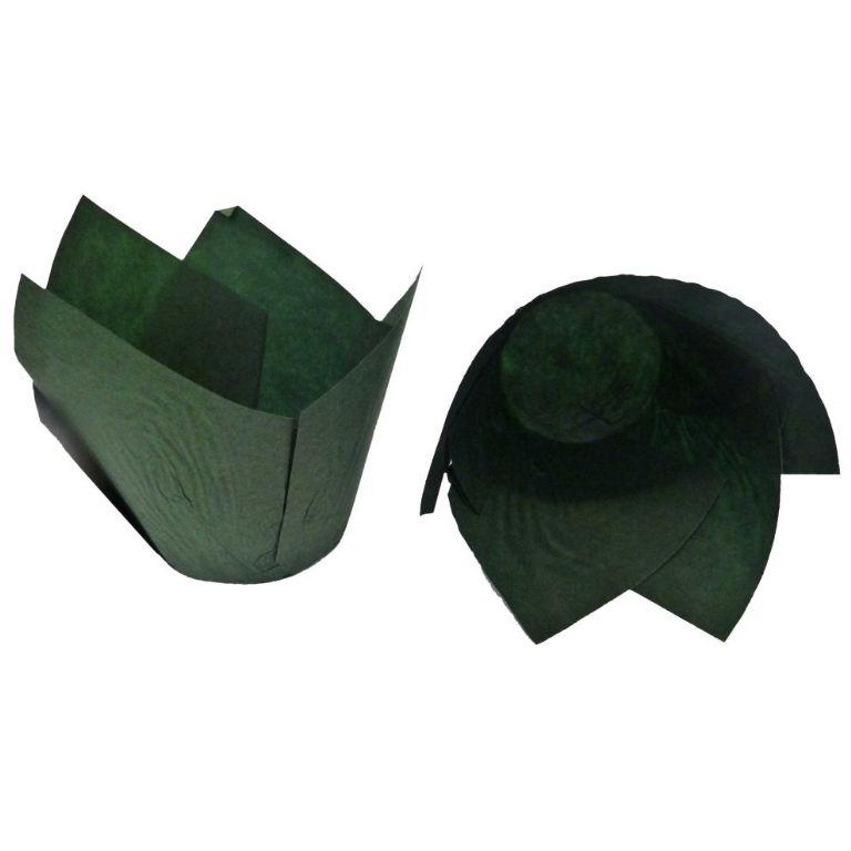 green_wrapp
